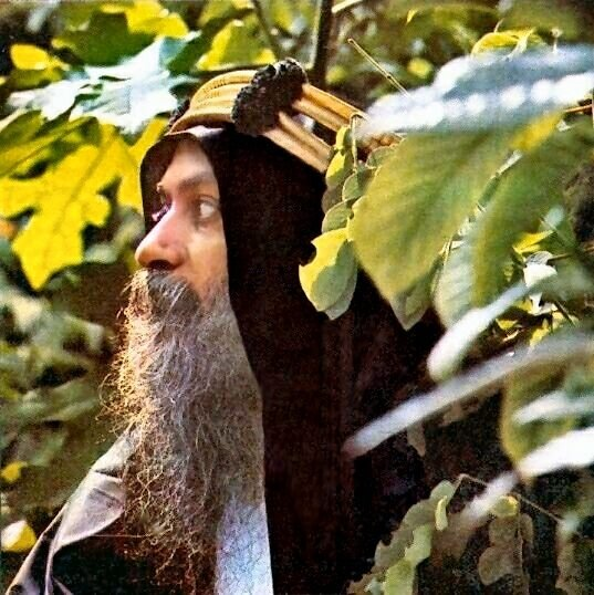 Osho on Security in Life