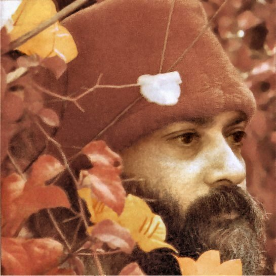 Osho - Don't condemn; don't suppress